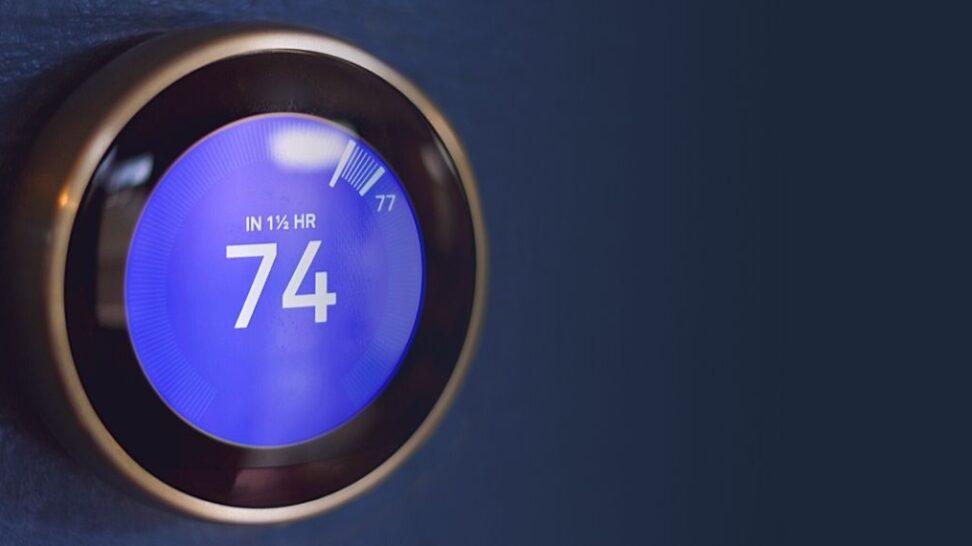 Nest Airwave